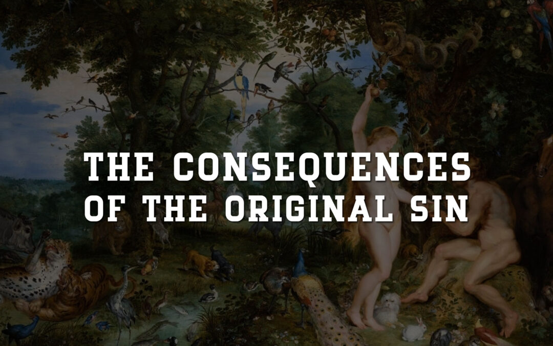 The Consequences of the Original Sin